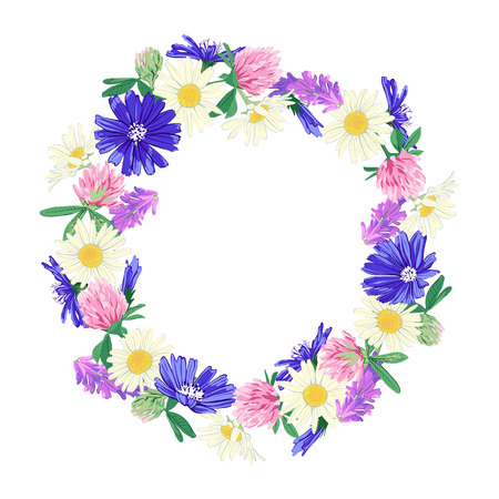 Hand drawn Wildflowers wreath isolated on white background. Spring summer decor frame. Vector illustration. Design element for invitations, greeting cards, cosmetic and other.