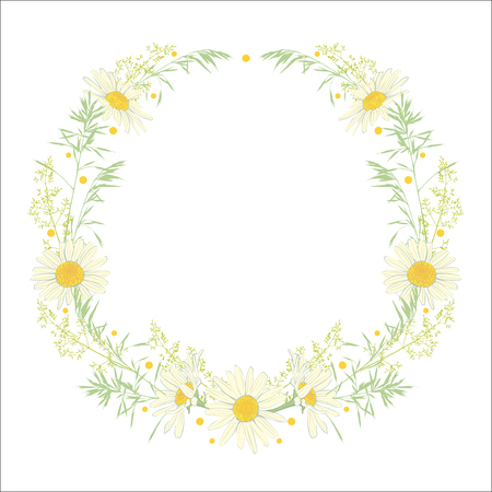 Hand drawn wreath with camomile and herbs isolated on white background. Spring summer decor frame. Vector illustration. Design element for invitations, greeting cards, cosmetic and other. 向量圖像