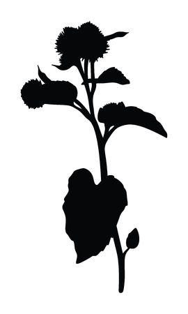 Burdock silhouette isolated on white background Vectores