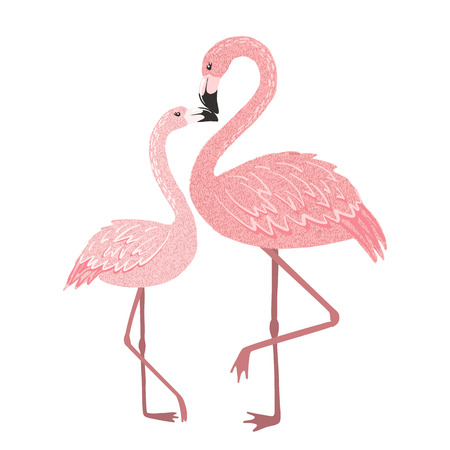 Hand drawn cute pink flamingo mom with baby isolated on white background. Tropical bird. Vector illustration.