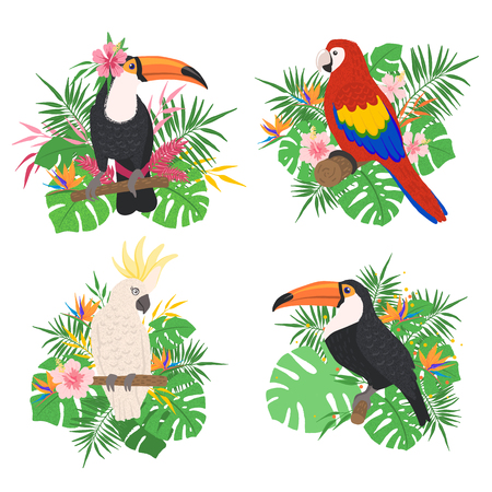 Tropical birds set with floral elements isolated on white background in hand drawn style. Exotic birds collection. Concept of wildlife and nature. Vector illustration. Vetores