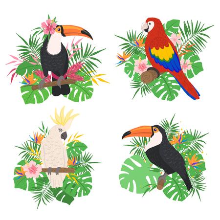 Uccelli tropicali con elementi floreali isolati su sfondo bianco in stile disegnato a mano. Collezione di uccelli esotici. Concetto di fauna selvatica e natura. Illustrazione vettoriale. Vettoriali