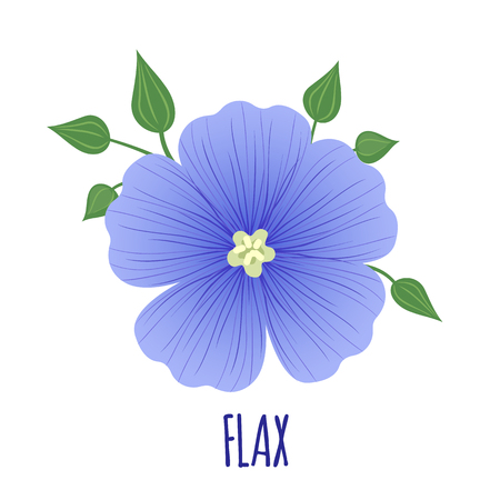 Flax flower icon with seeds in flat style isolated on white background. Superfood flax medical herb. Vector illustration. Illustration
