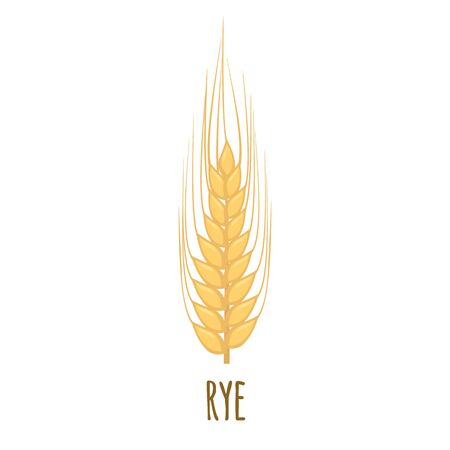 Rye or Wheat ear with grains isolated on white background. Harvest icon. Vector illustration. Иллюстрация
