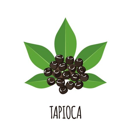 Tapioca icon with cassava leaf in flat style isolated on white background. Vector illustration.