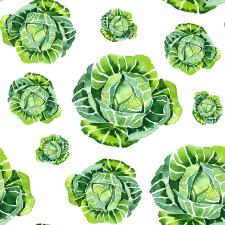 Watercolor summer insulated cabbage pattern on white background
