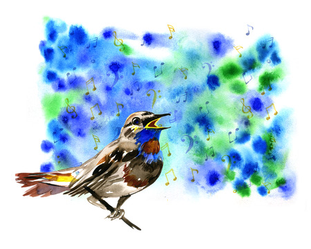 sings: Watercolor Bluethroat spring sings on blue background Stock Photo