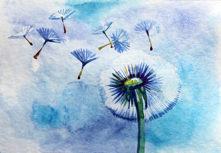 Akwareli lata dandelion na błękitnym tle