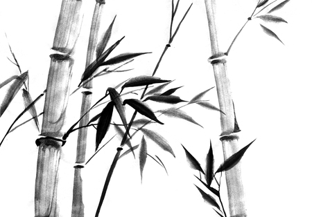 Watercolor ink Japanise bamboo on white background Banco de Imagens