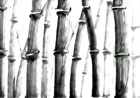 japanise: Watercolor ink Japanise bamboo on white background Stock Photo