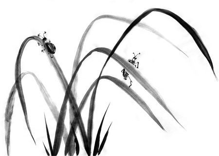 japanise: Watercolor ink Japanise beetles on the grass on white background Stock Photo