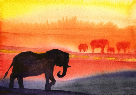 orange sunset: Watercolor African elephants on orange sunset background