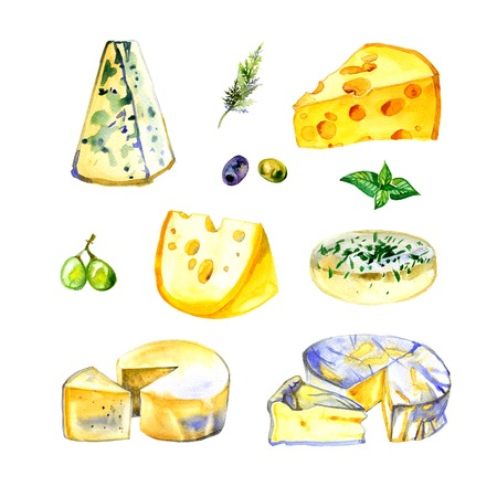 brie: Watercolor milk cheese set on white background
