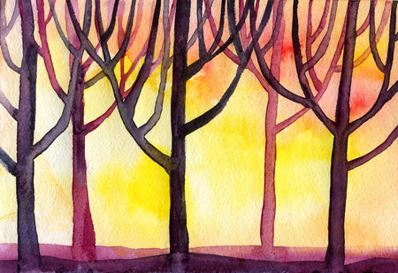 branched: Watercolor sunset forest trees branched a lot of the background