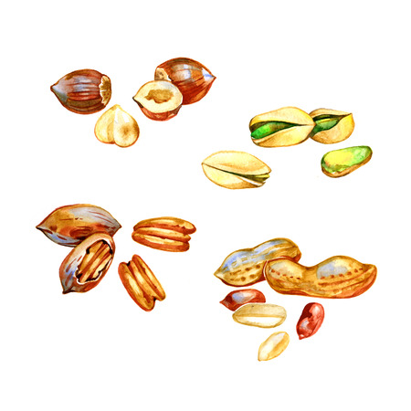 cashews: Watercolor Set with nuts on white background