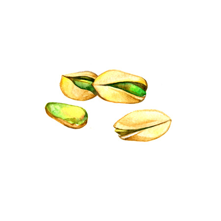 pistachios: Hand drawn watercolor painting nut on white background. Illustration of pistachios Stock Photo