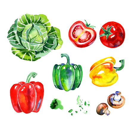 hand lay: Premium quality watercolor icons set of various healthy food, herbs, mushrooms and vegetables. Hand drawn. Flat lay watercolor objects isolated on white background.