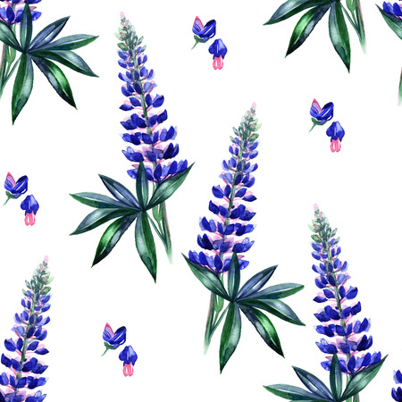 Watercolor lupines seamless pattern. Watercolor spring flower. Floral background. Hand painted garden illustration