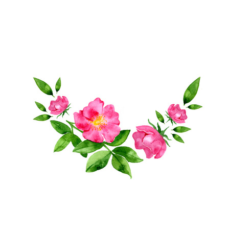 watercolor flowers. Hand drawn wild rose flower and leaves