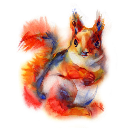 squirrel isolated: Squirrel isolated on a white background, watercolor Stock Photo