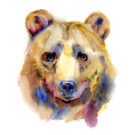 Grizzly oso frontal de cabeza de pintura a la acuarela ilustración aislado sobre fondo blanco.