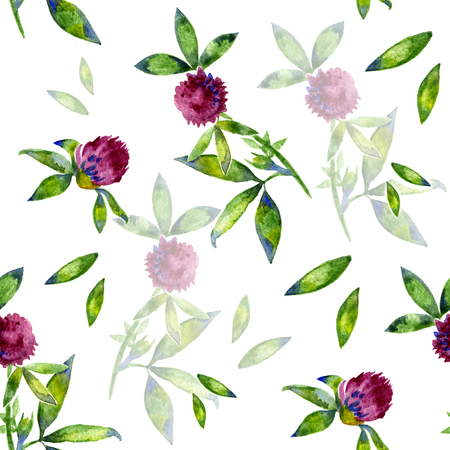 trifolium: Watercolor Trifolium clover flower texture seamlees pattern