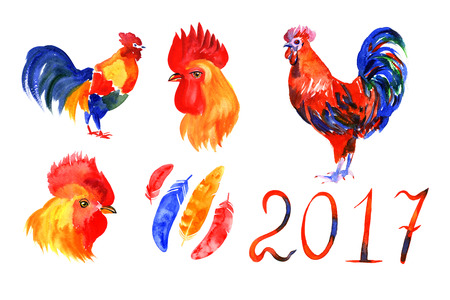 flamy: Rooster, red cock, Chinese zodiac symbol of the 2017 year. Watercolor illustration. Design for t-shirt print, greeting card, calendar. Stock Photo
