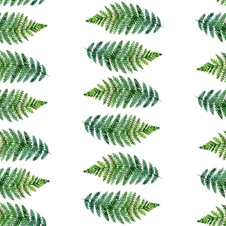 ferns: watercolor seamless pattern with tropical ferns, white background