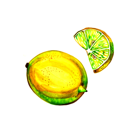 limon: lemon watercolor, hand drawn illustration, isolated on white background