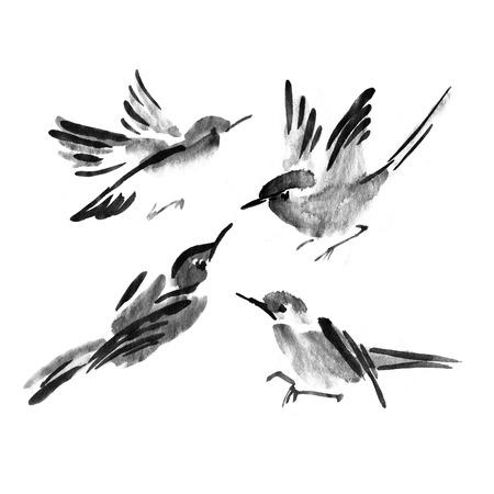 Sumi-e inktverzameling van vogels. Aquarel schilderij