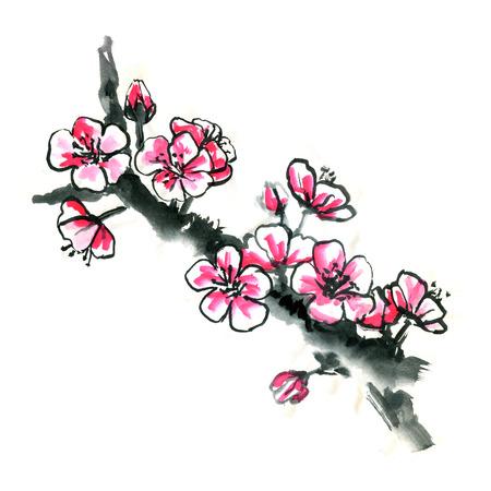 Chinese sakura Japanese plum blossom grunge spring sumi-e