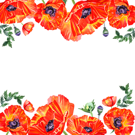 opium poppy: Frame with red watercolor poppy flowers. Greeting.
