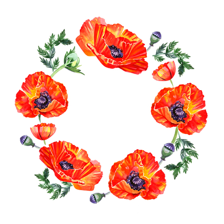 Wildflower poppy flower wreath in watercolor style isolated. Background, texture, wrapper pattern, frame or border. Stock Photo