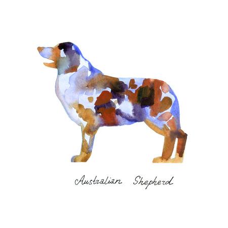 Watercolor Australian shepherd. Silhouette dog on white