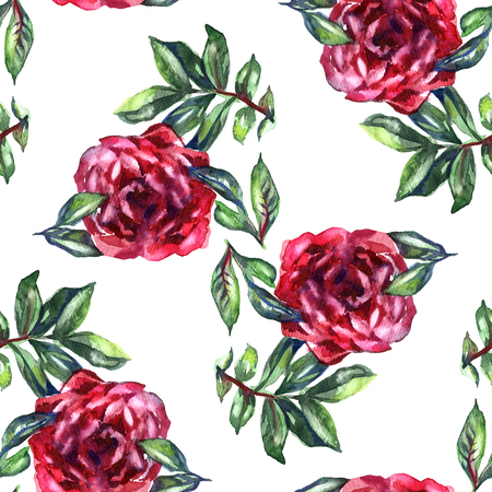 Pattern with watercolor realistic rose, peony and butterflies. Illustration on white background Stock Photo