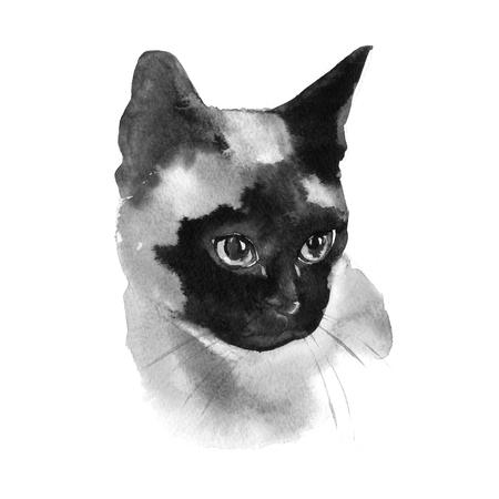 水彩シャム猫手ペット肖像画イラスト白背景に分離