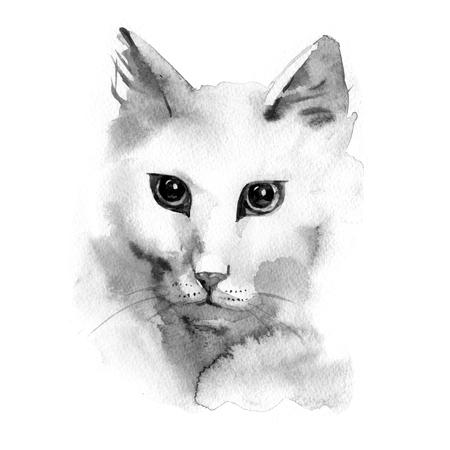 vertebrate: Watercolor photorealistic illustration of a white cat Stock Photo