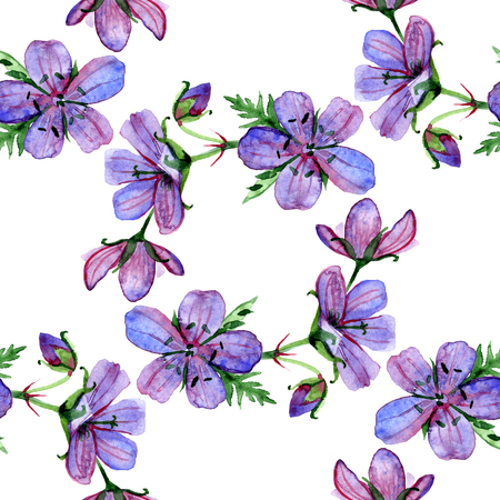 violet red: Watercolor floral seamless pattern with Forest geranium flowers on white background