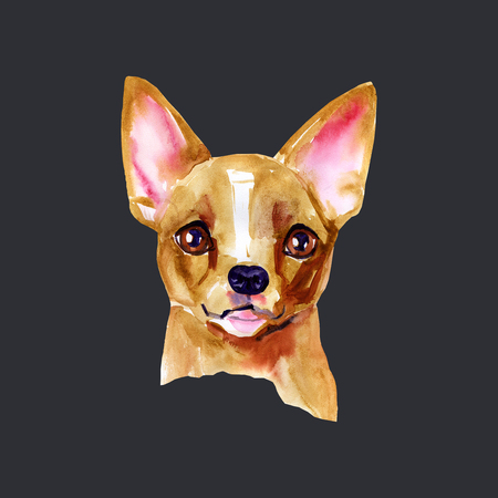 Portrait cute dog isolated on black background. Watercolor hand drawn illustration. Popular breed dog. Greeting card design. Chihuahua.