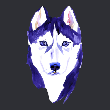 Cute Dog. Dog T-shirt graphics. watercolor husky on black background Stock Photo