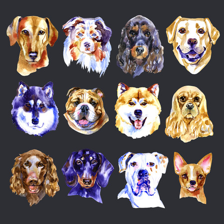 Watercolor illustration set of dogs isolated on black background