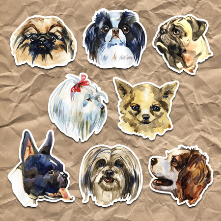 Portrait cute dog set isolated. Watercolor hand-drawn illustration. Popular decorative dog breeds. Greeting card design.