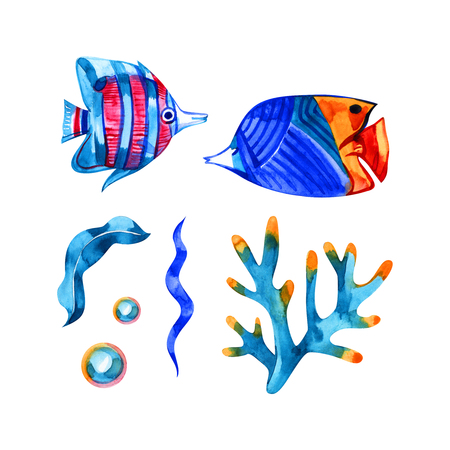 Watercolor sealife set. Hand drawn illustration isolated on white background.