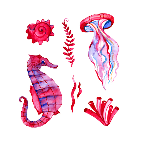Set of hand drawn watercolor underwater fishes and octopus. Artistic design elements.
