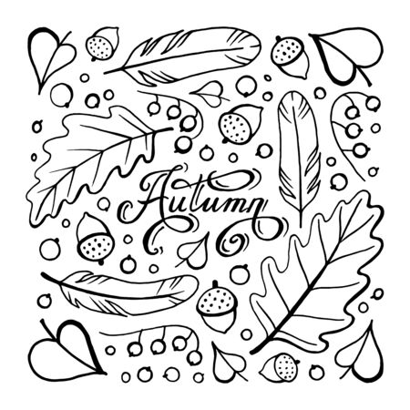 Autumn doodle hand-drawn page with outlines for adult coloring book, art therapy, isolated on white background. Stok Fotoğraf