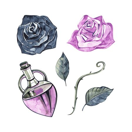 Bottle with essential oil of rose. Cosmetic, perfumery and medical oils. Watercolor set Archivio Fotografico - 130531575