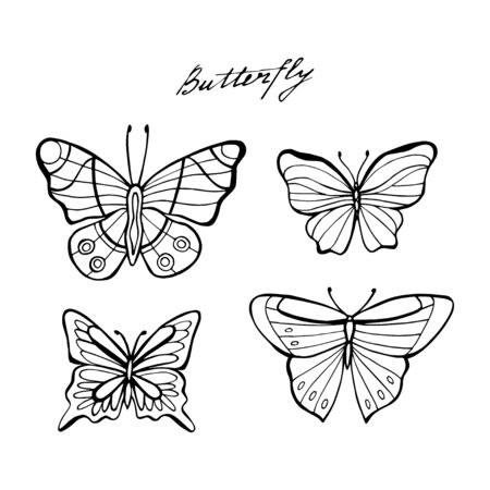 Amazing fly butterfly with dots, spirals, triangles. Wild life insect. Vector. Creative bohemia concept for wedding invitations, cards, tickets, congratulations, branding, logo, label. Black and white.
