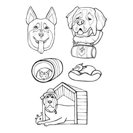 Pet dog Siberian Husky , Saint Bernard. Vector hand draw illustration.