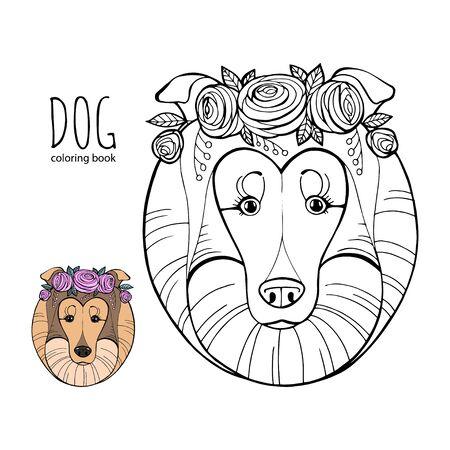 Libro de colorear para niños, Razas de perros: Collie. Ilustración de vector