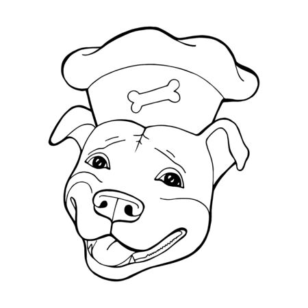 Pit bull Terrier in a chefs cap. Coloring book page. Vector illustration. Vector  pure-bred